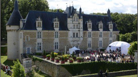 cours du Château .4. lsc2016©Stéphanie Beerens